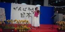 沖縄・愛でいっぱいの地球-DSC_0292.JPG
