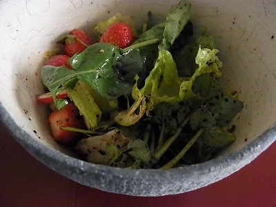 イタリア発 シンプル、幸せ、おいしい暮らしのレシピ-insalata