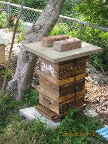 chu98xpのブログ-日本蜜蜂巣箱1