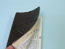 ヒロアミーの日記-辞書の画像