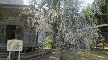 kokujoujiさんのブログ-2011051014300000.jpg