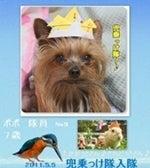 """""""小さな幸せ""""わんこと一緒☆"""