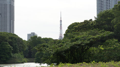 初めてのオートキャンプ!子供と一緒にキャンプに行こう!-浜離宮と東京タワー
