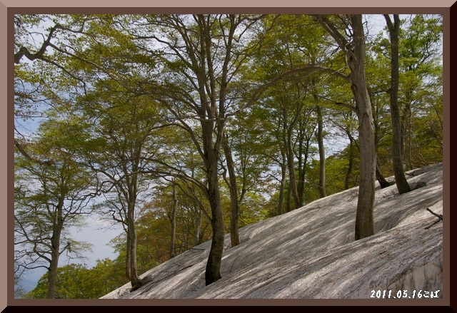 ロフトで綴る山と山スキー-0516_1205