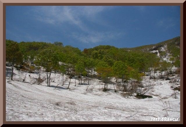 ロフトで綴る山と山スキー-0516_1117