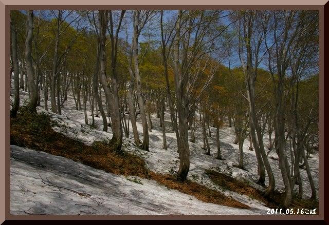 ロフトで綴る山と山スキー-0516_1156