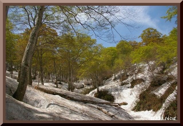 ロフトで綴る山と山スキー-0516_1131