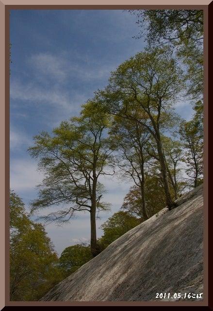 ロフトで綴る山と山スキー-0516_1206