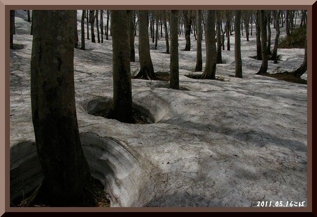 ロフトで綴る山と山スキー-0516_1151