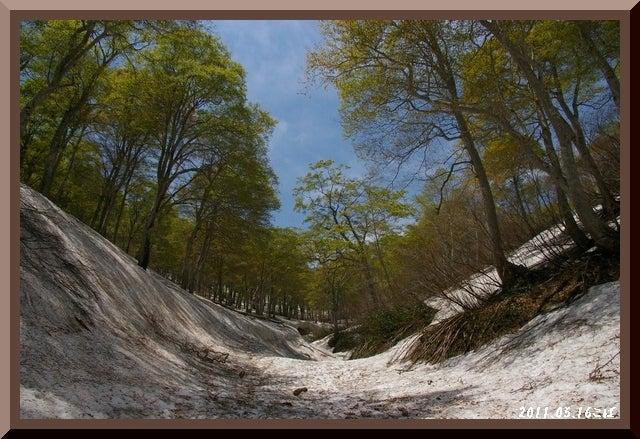 ロフトで綴る山と山スキー-0516_1129