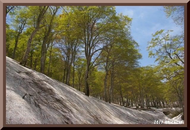 ロフトで綴る山と山スキー-0516_1130