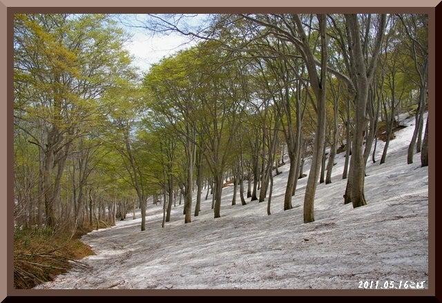 ロフトで綴る山と山スキー-0516_1159