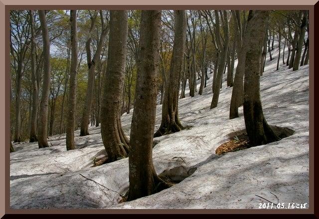 ロフトで綴る山と山スキー-0516_1153