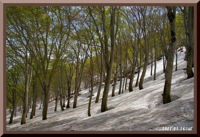 ロフトで綴る山と山スキー-0516_1144