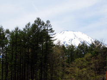 K9ゲーム推進プロジェクトのブログ-富士山