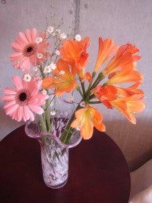 """『愛と調和』 『感謝』 パーソナルトレーニング ~""""本質・違いを 『観じる』 トレーナー"""" 上山純一 ~-Flowers in my room   (Apr. 13, 2011)"""
