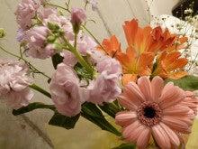 """『愛と調和』 『感謝』 パーソナルトレーニング ~""""本質・違いを 『観じる』 トレーナー"""" 上山純一 ~-Flowers in my room ②  (Apr. 14, 2011)"""