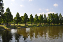 microcosmos B-水上公園43