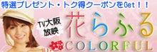 $ルリ色☆るリか-240ー80バナー.jpg