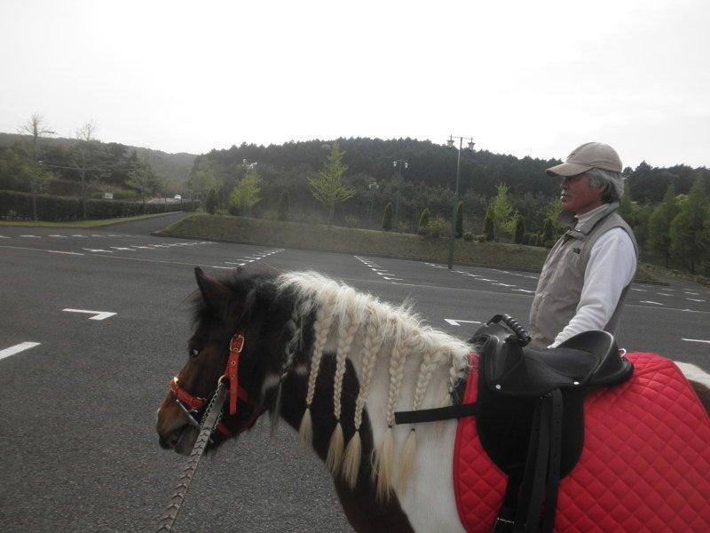 馬を愛する男のブログ Ebosikogen Horse Park-三つ網似合うでしょ