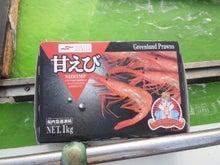 マサの釣りライフ-2011-05-22 05.41.57.jpg2011-05-22 05.41.57.jpg