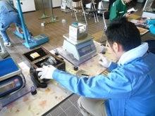 天然トラフグ「あのりふぐ」が自慢!伊勢志摩の魚屋さん◎丸勢水産ニュース-検査の様子