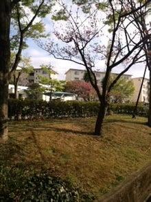 涼のどぶろぐ←つながり日記←-CA3I01050001.jpg
