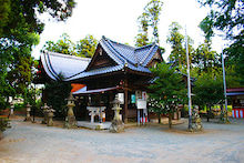 東條的世界最古の国へようこそ-弓削神宮7