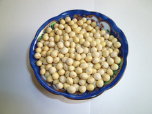 高橋食品株式会社-国産大豆