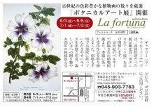 $ギャラリー La fortuna(ラ・フォルトゥーナ)のスタッフブログ