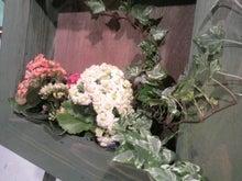 アナウンサーでセラピスト yukie の smily days                   ~周南市アロマのお店 Aroma drops~ -2011053015510000.jpg