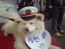 津軽の観光応援隊のブログ