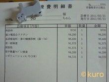甘えん坊将軍おくろさま参上!-phogo20110606132150_0.jpg