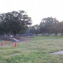 岩槻公園(お林公園)…