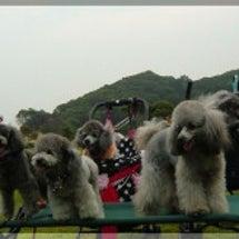 犬吉撮影会 at 恋…