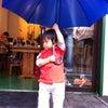 雨降り、傘。の画像