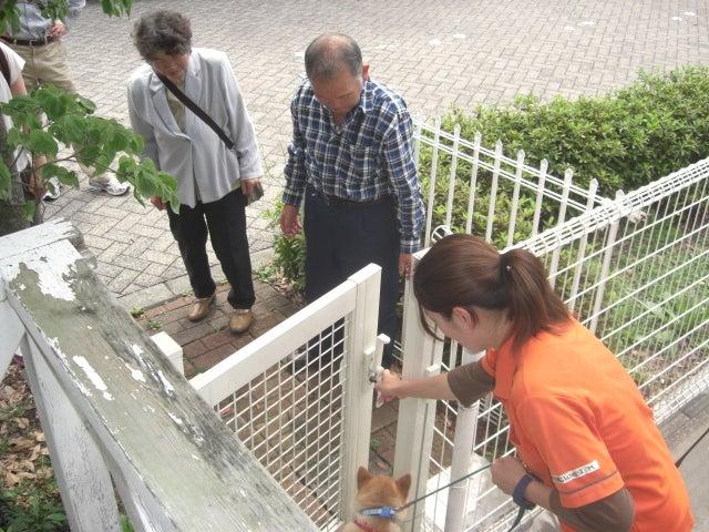 長崎の保健所の命を救う会の代表のブログ 長崎県の動物愛護団体です 犬と猫の里親譲渡会を毎月開催-感動の再会。