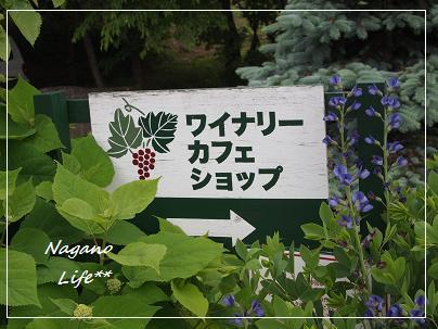 Nagano Life**-看板