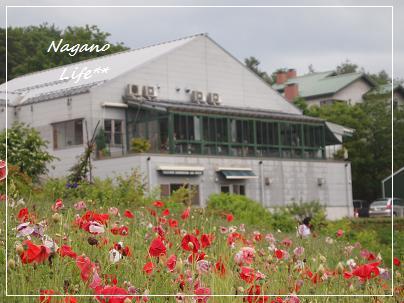 Nagano Life**-ヴィラデスト