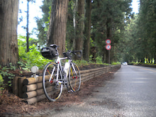 自転車はやっぱり自走で。