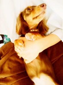 ローラ Official Blog「OK!OK!」Powered by Ameba-STIL0150.jpg