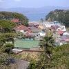 猫の島 田代島の画像
