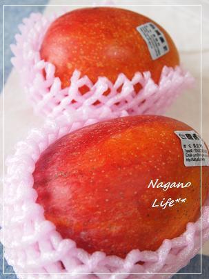 Nagano Life**-マンゴー