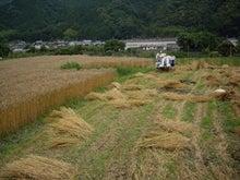 有機農家を目指す年の差夫婦のブログ