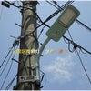 目黒区の電柱据え付け街灯がLED化してた!の画像