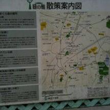 江ノ島、小田原に行っ…