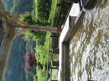 大橋るみ子オフィシャルブログ「ModernTimes」Powered by Ameba-SN3J1186.jpg