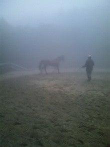 馬を愛する男のブログ Ebosikogen Horse Park-霧の中でも運動