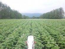 齊藤農場ブログ-110703_154826.jpg