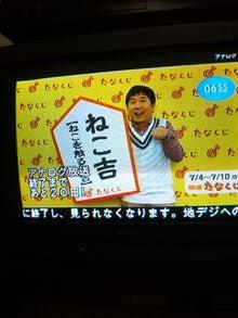 熊本ではたらく女のblog-nekokiti